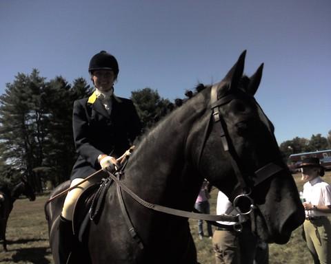 Katy_horse